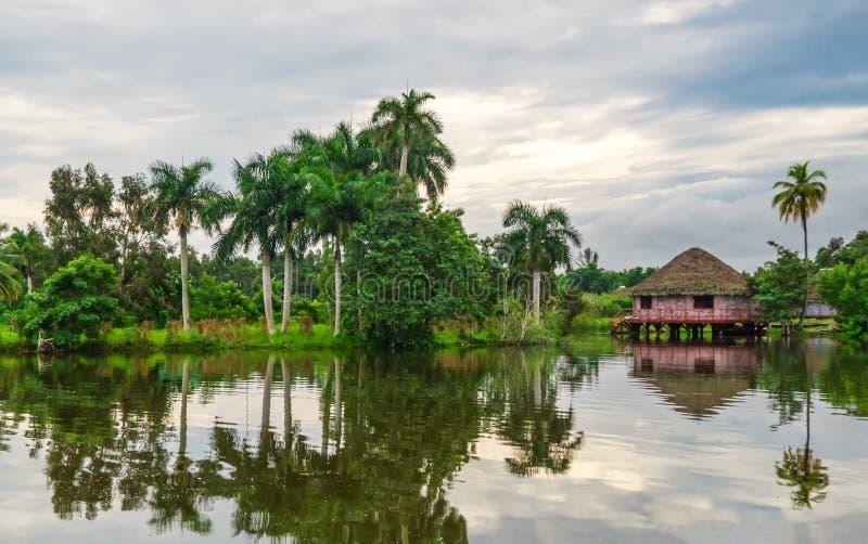 Bungalow sul fiume nella foresta pluviale fotografia stock