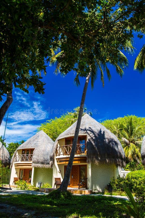 Bungalow sulla spiaggia di corallo concetto delle feste for Concetto di design moderno bungalow