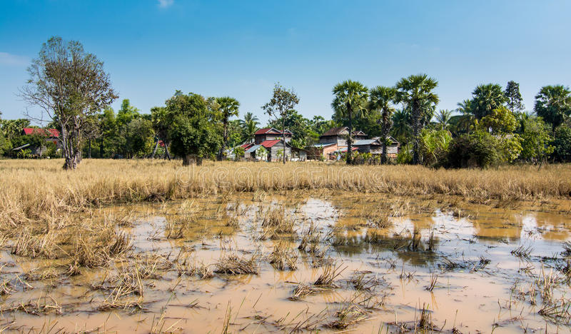 Bungalows in Angkor complex, Siem Reap, Cambodia royalty free stock photos