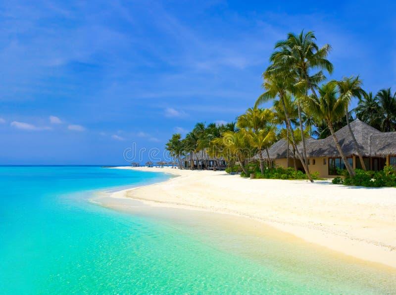 Bungalows da praia em um console tropical imagens de stock