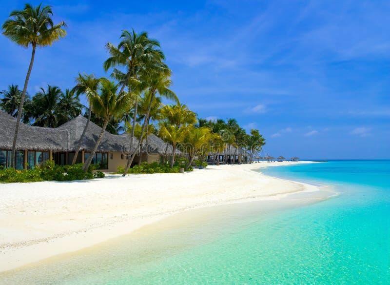 Bungalows da praia em um console tropical imagem de stock