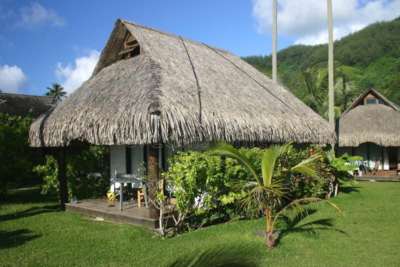 Bungalows tropicais do recurso fotografia de stock royalty free