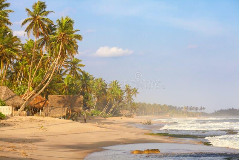 Bungalowwen op het strand stock foto