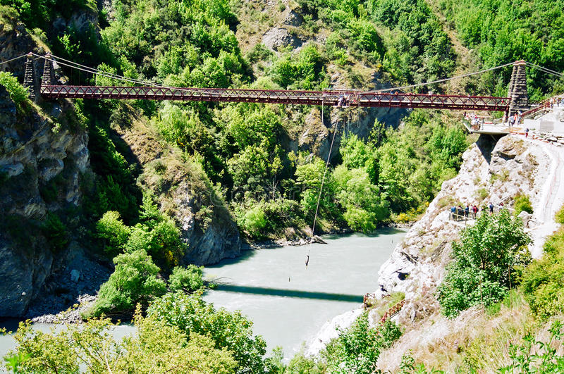 bungy hoppa New Zealand royaltyfri foto