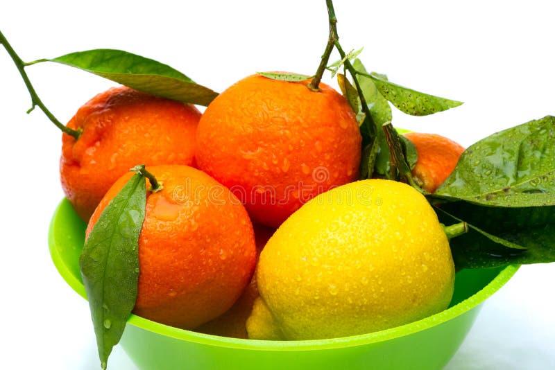 Bunke av den isolerade tangerin och citronen royaltyfri bild