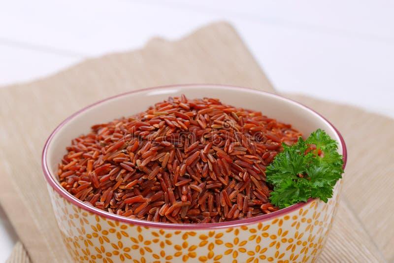 Bunke av röd rice arkivbilder