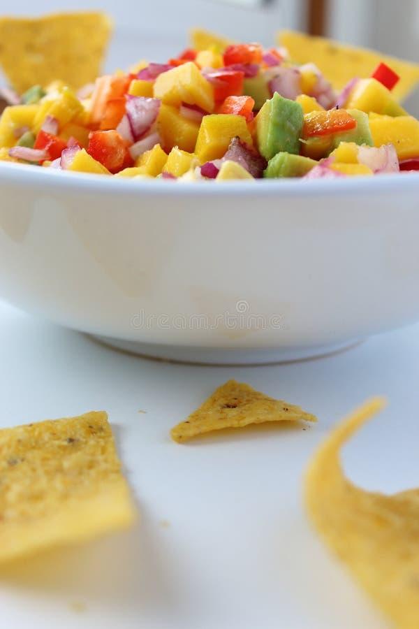 Bunke av salsadopp och nachoschiper royaltyfri bild