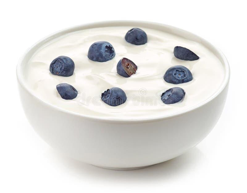 Bunke av yoghurtkräm med blåbär arkivfoto