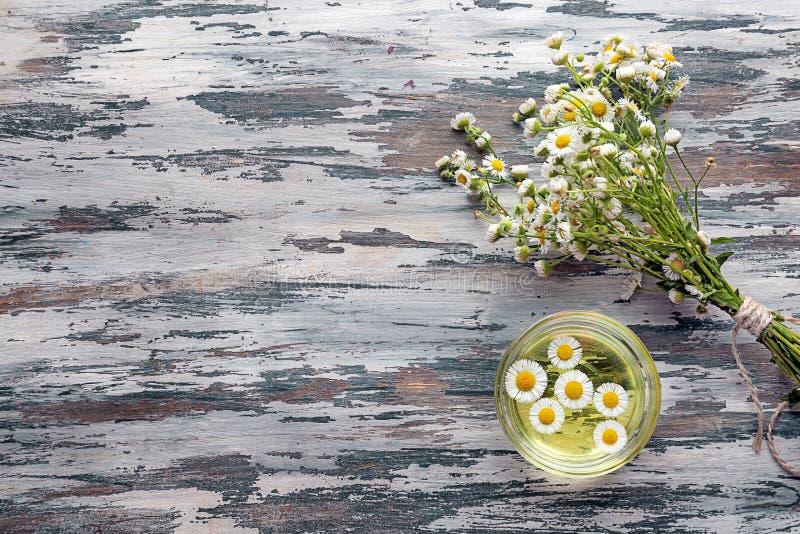 Bunke med nödvändig olja för kamomill och nya blommor på trätabellen arkivfoton