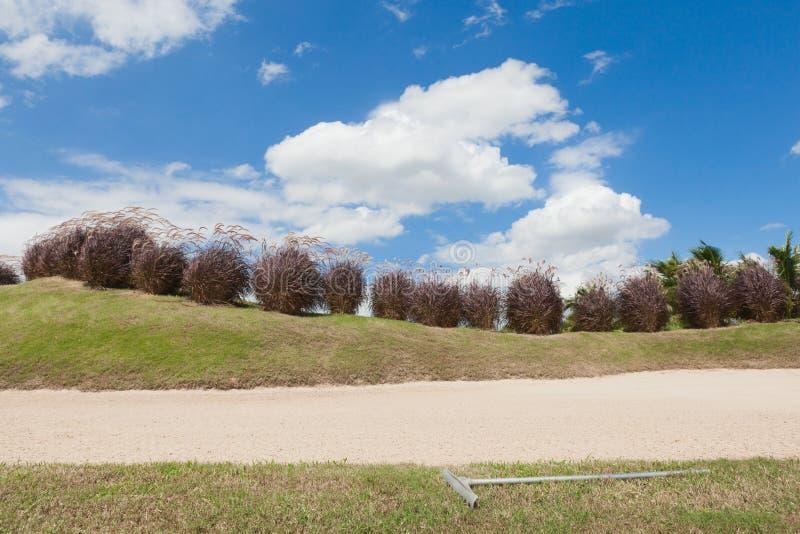 Bunkieru lub piaska oklepiec z świntuchem przy polem golfowym fotografia royalty free