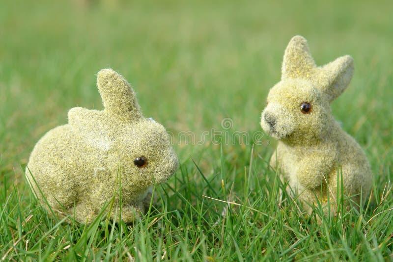 Bunnies in the garden stock photography