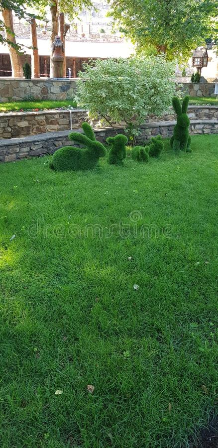 Bunnies made of grass royalty free stock images