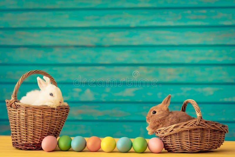 bunny καλαθιών αυγά Πάσχας στοκ εικόνες