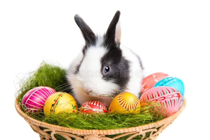 Bunny Πάσχας με τα αυγά στο καλάθι στοκ εικόνες