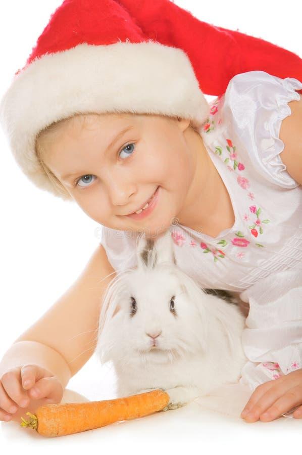 Download Bunny στοκ εικόνες. εικόνα από ευτυχία, εσωτερικός, απομονωμένος - 17057254