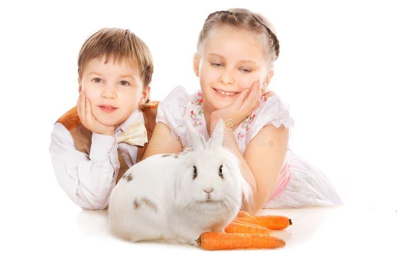 Download Bunny στοκ εικόνα. εικόνα από kindergarten, ευτυχής, προσοχή - 17057313