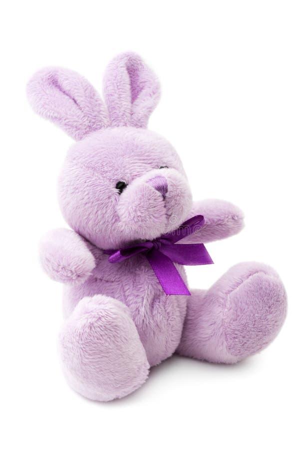 Free Bunny Royalty Free Stock Photos - 29971678