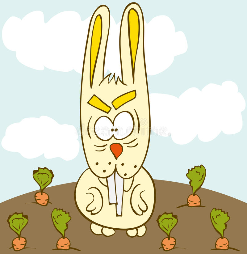 Bunny Carrot Field Royalty Free Stock Photos