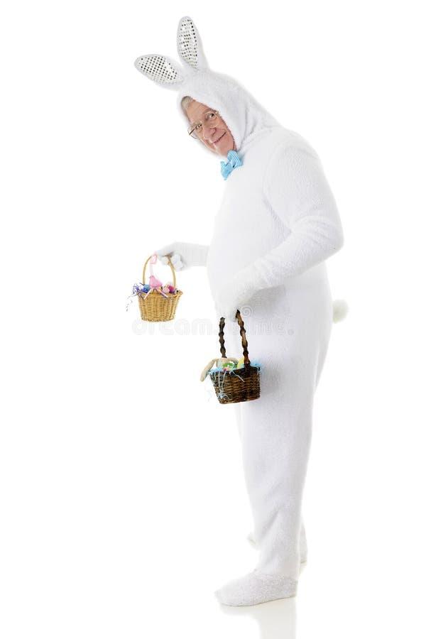 Bunny Delivering Easter Baskets idoso imagens de stock