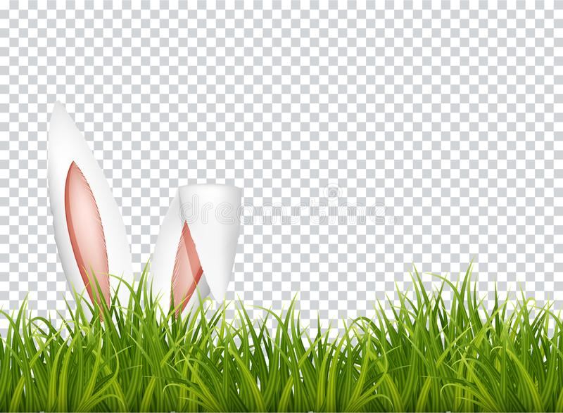 Bunny ears in grass. Easter background. Vector royalty free stock photography