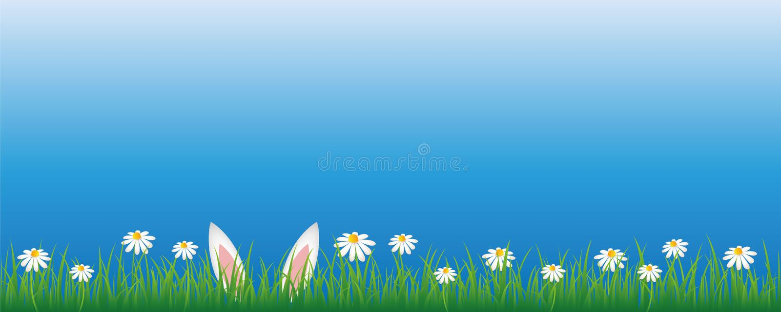 Bunny ears in green meadow with white daisy flowers banner with copy space royalty free illustration