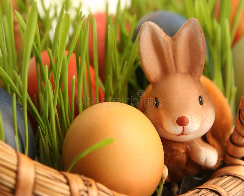 Bunny and egg stock photography