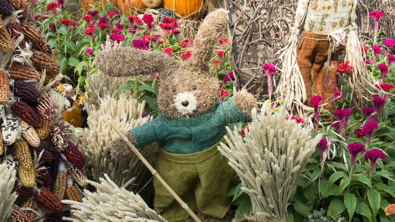 Bunny Farmer Scarecrow Guarding Harvest royalty free stock photography