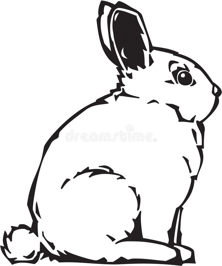 Bunny Illustration stock photography