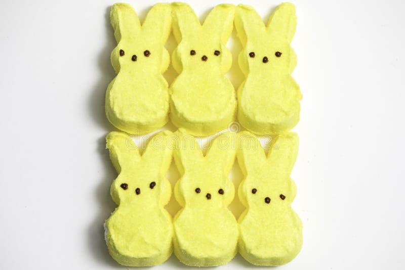 Bunny Marshmallows amarelo imagens de stock royalty free
