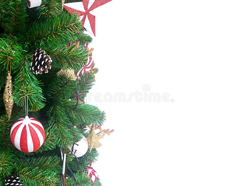 Bunny and rabbit characterChristmas gift and tree on a white. stock photos