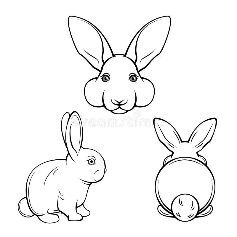 Bunny set. Rabbits, hares. Muzzle bunnies. Banny s back. Vector illustration. royalty free illustration