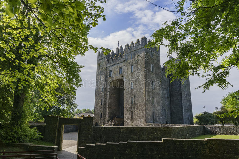 Bunratty城堡&伙计公园 免版税库存照片