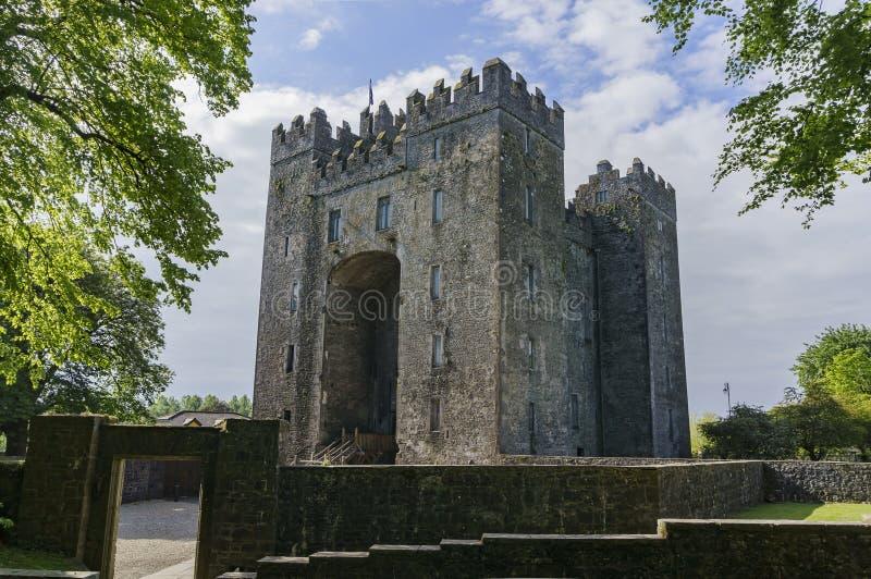 Bunratty城堡&伙计公园 库存照片
