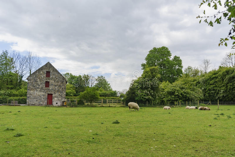 Bunratty Castle & λαϊκό πάρκο στοκ φωτογραφία με δικαίωμα ελεύθερης χρήσης