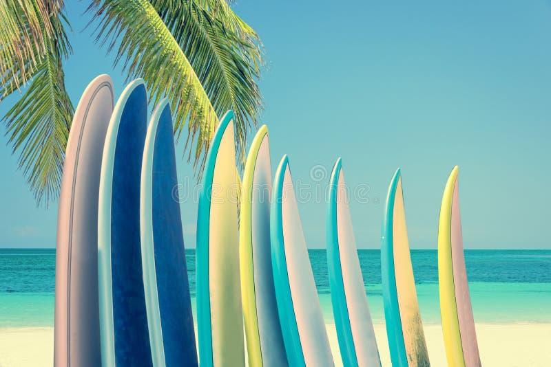 Bunt av färgrika surfingbrädor på en tropisk strand vid havet med palmträdet, retro tappningfilter royaltyfri bild