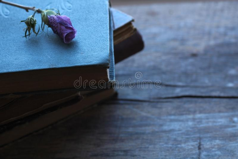 Bunt av gamla böcker med den torkade purpurfärgade blomman som är pösig på en träbakgrund royaltyfria foton