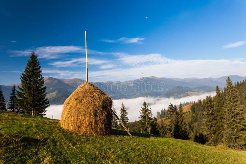 Bunt av hö på en grön äng i bergen royaltyfria foton