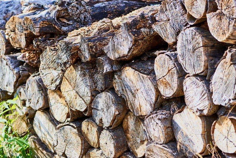 Bunt av trä, torrt och huggit av arkivbild