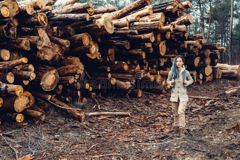 Bunt av trädstammen royaltyfri foto