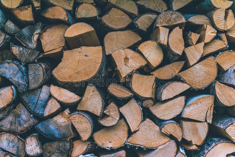 Bunt av vedträ abstrakt bakgrundsclosejournal upp trä royaltyfri foto