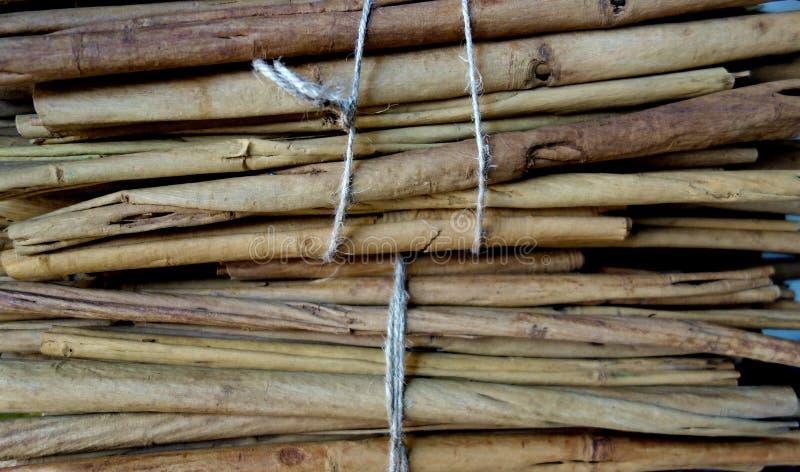 Buntade kanelbruna pinnar för rå krydda royaltyfri fotografi