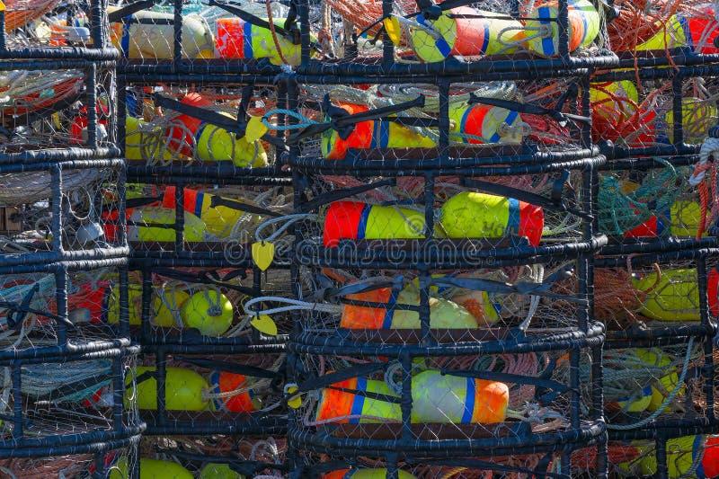 Buntar av krabbakrukor arkivfoto