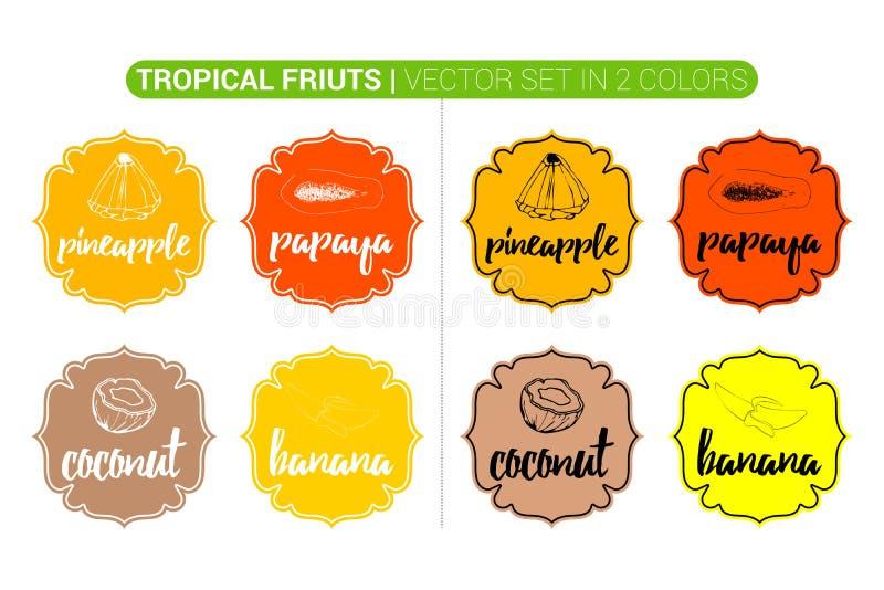 Bunte Aufkleber der tropischen Früchte mit Kokosnuss, Ananas, Papaya, Banane Karikatur, die Aufkleber annonciert stock abbildung