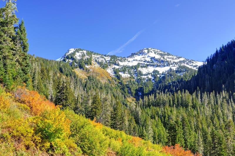 Bunte Berge im Herbst stockbild