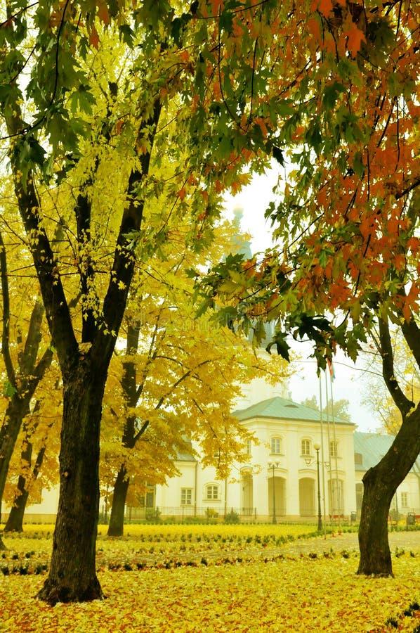 Bunte Blätter im Herbst stockbild