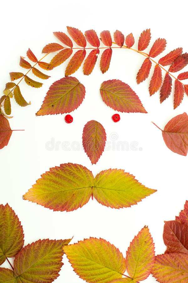 Bunte Blätter im Herbst Gesicht isolat lizenzfreies stockbild