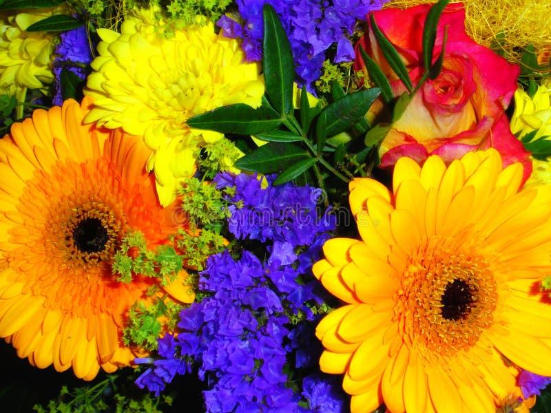 bunte blumen stockbild bild von floral gr n orange. Black Bedroom Furniture Sets. Home Design Ideas