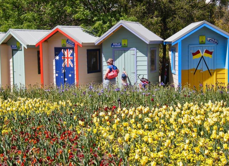 Bunte Blumen-Anzeige im Freien; Australisches Sommer-Thema lizenzfreie stockbilder