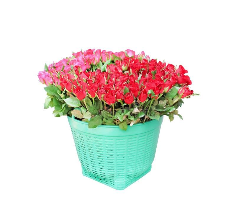 Bunte Blumen der roten Rosen, die blühen, rosa Knospenblumenstrauß mit grünem Stamm und Blätter im großen hellgrünen Plastikkorb  stockbild