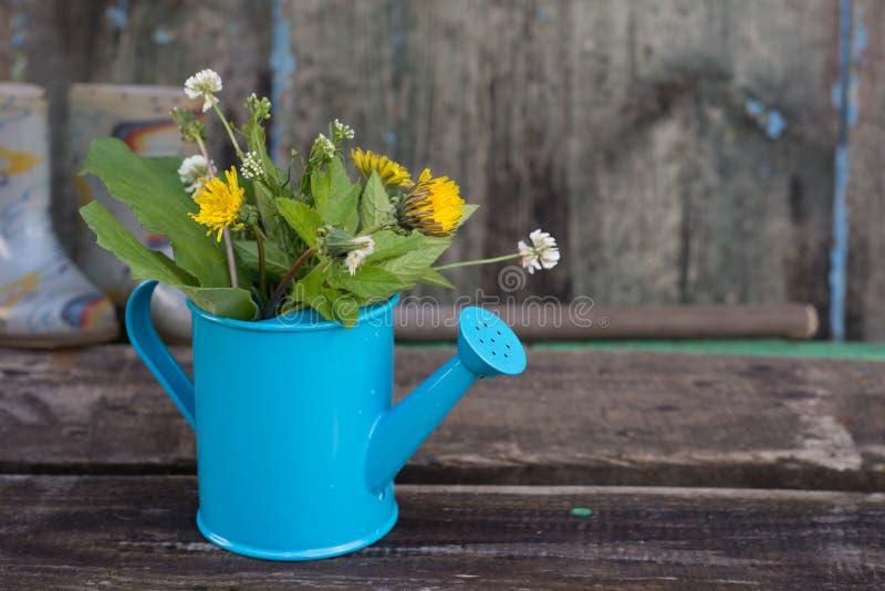 Bunte Blumen in einer Gießkanne stockfotos